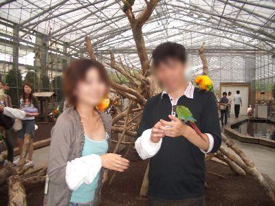 kakegawa_60.jpg