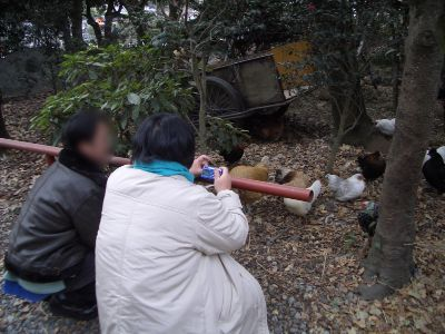 fujikawa_12.jpg