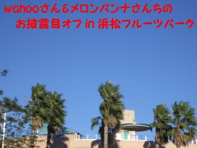 fruit_00.jpg